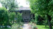 Grüne Lunge I – Kleingartenanlagen
